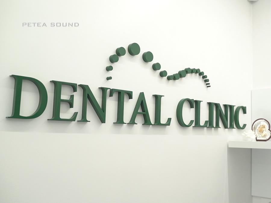Proiect sunet clinica stomatologica